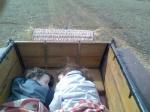 alvás szekérben.jpg